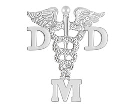 DDM Doctor of Dental Medicine Graduation Pins, Charms & Necklace