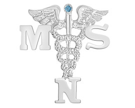 MSN Masters of Science in Nursing Graduation Pins, Charm and Necklace