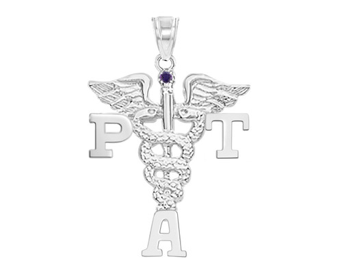PTA Physical Therapist Assistant Graduation Pins, Charm and Necklace