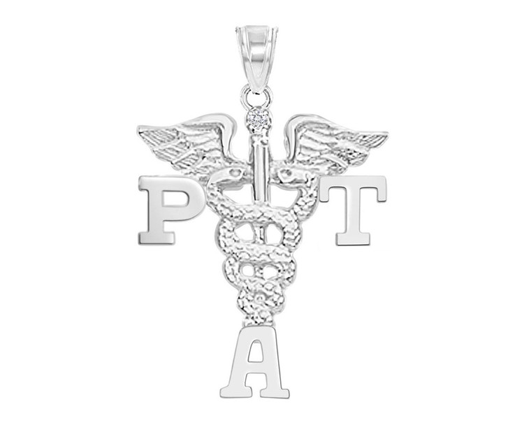 PTA Physical Therapist Assistant Graduation Charms