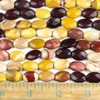 Mookaite 10x14mm Faceted Oval Beads - approx. 8 inch strand, Set B