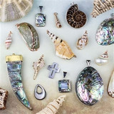 Shell and Natural Pendants