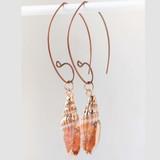 Simple Sea Shell Earrings