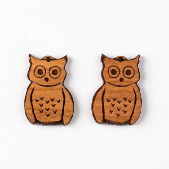 Handmade Wooden 19x20mm Fun Owl Earring Set