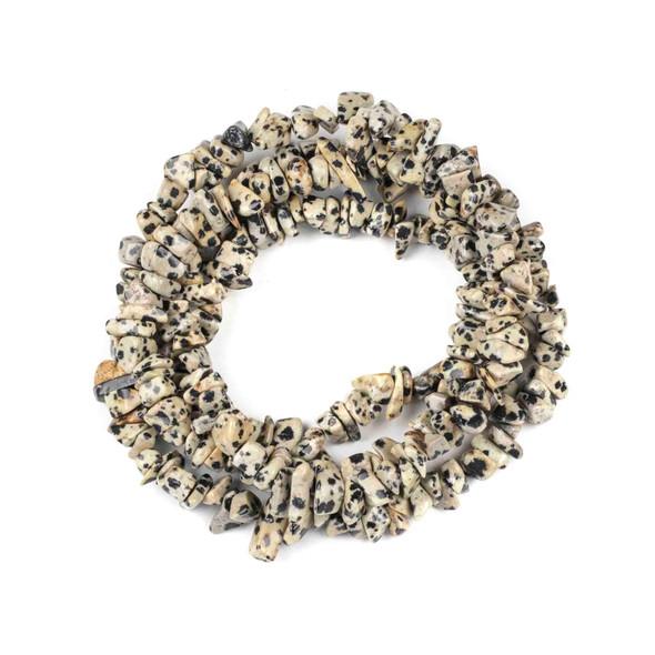 Dalmatian Jasper 5-8mm Chip Beads - 34 inch circular strand