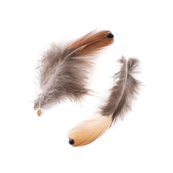 Brown Feathers with Black Dot, 4 inches, 2 per bag - #2-1