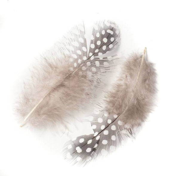 Black and White Dotted Feathers, 5 inches, 2 per bag - #2-3