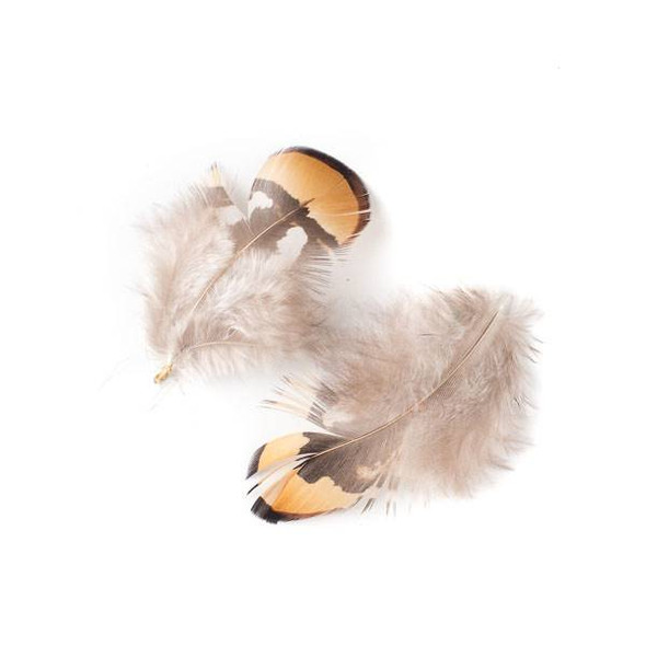 Brown and Grey Feathers, 3 inches, 2 per bag - #2-9