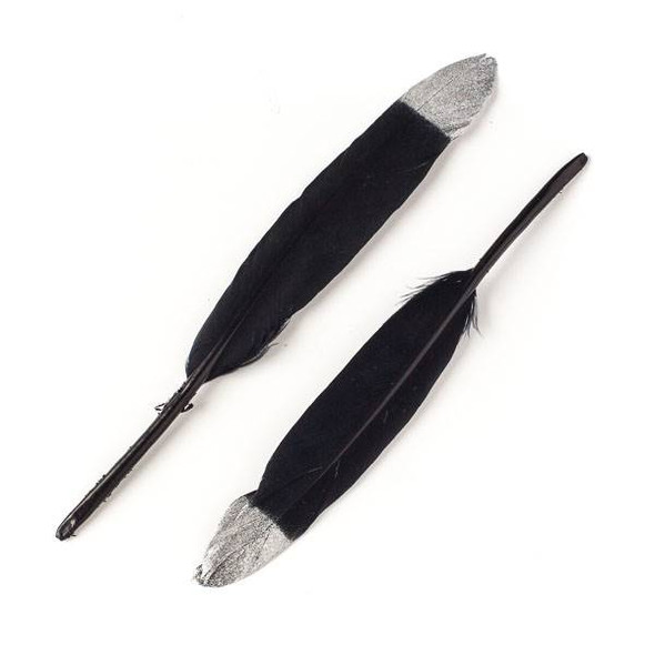 Black Feathers with Silver Tips, 6 inches, 2 per bag - #3-3