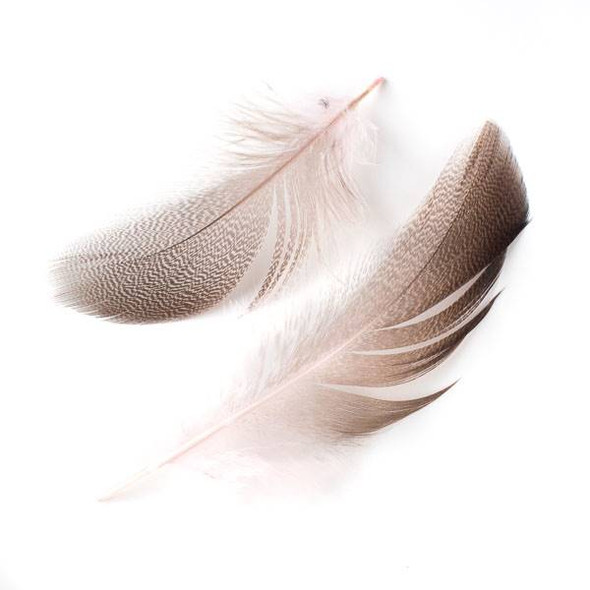 Pink and Brown Feathers, 4-5 inches, 2 per bag - #3-6