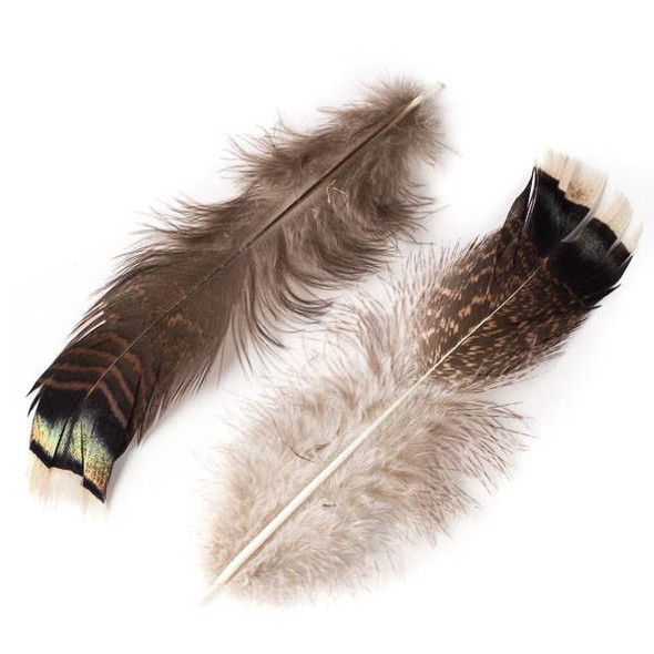 Brown and Black Striped Feathers, 6-7 inches, 2 per bag - #4-5