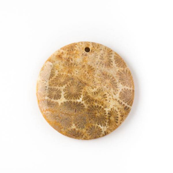 Fossilized Coral 40mm Top Front to Back Drilled Coin Pendant with a Flat Back - 1 per bag