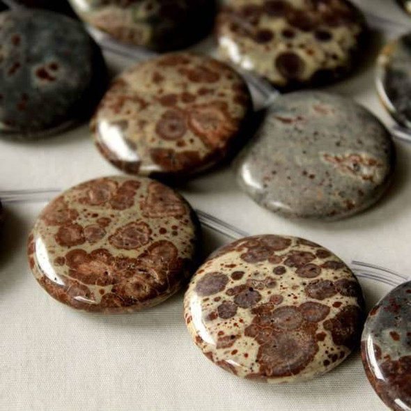 Mexican Orbicular Jasper 30mm Top Drilled Coin