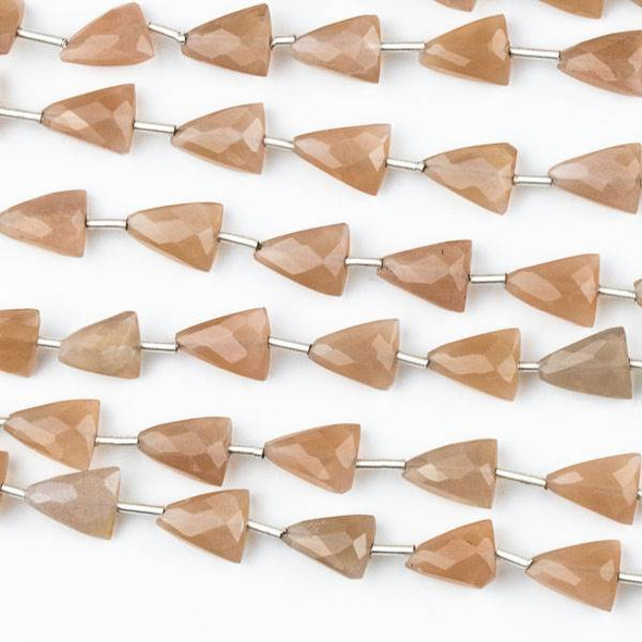 Mystic Chocolate Moonstone 7x9mm Through Drilled Faceted Triangle Beads - 8 inch strand