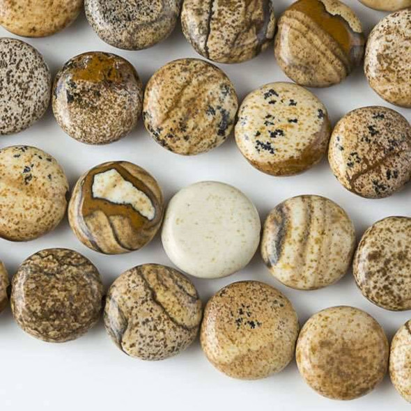 Picture Jasper 10mm Coin Beads - approx. 8 inch strand, Set A