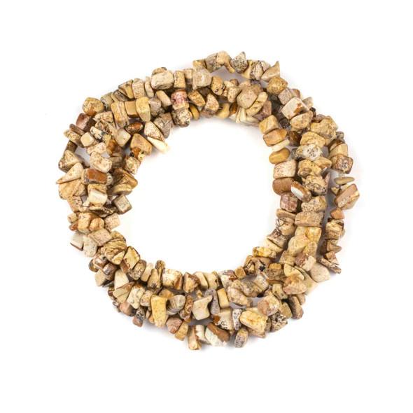 "Picture Jasper 5-8mm Chip Beads - 34"" circular strand"