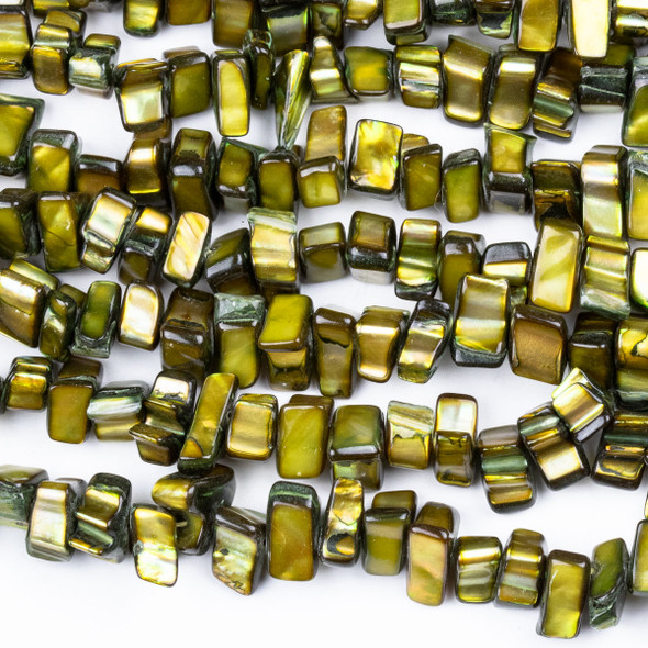 Dyed Shell 5x8-10mm Golden Green Brown Slice Beads - 15 inch strand