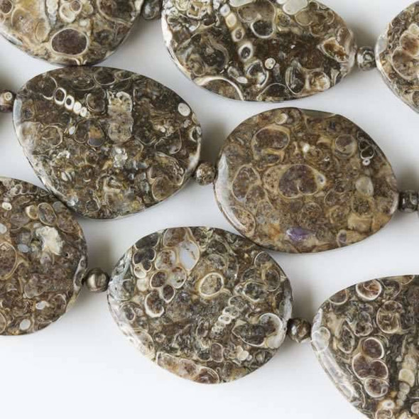 Turritella Agate 23x28-30x35mm Slabs alternating with 4mm Rounds - approx. 8 inch strand