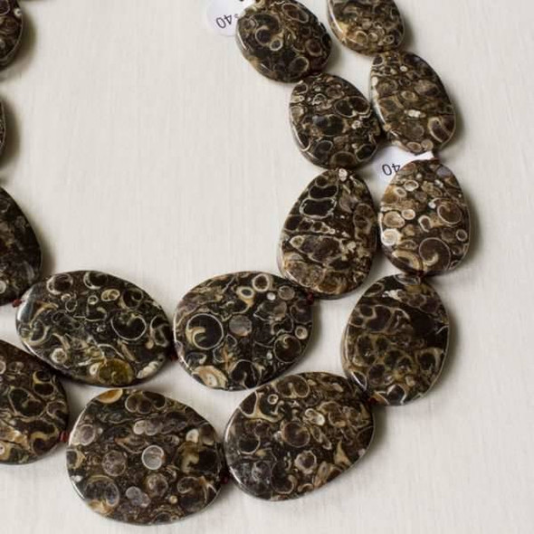 Turritella Agate 20x25mm-28x40mm Graduated and Knotted Slabs