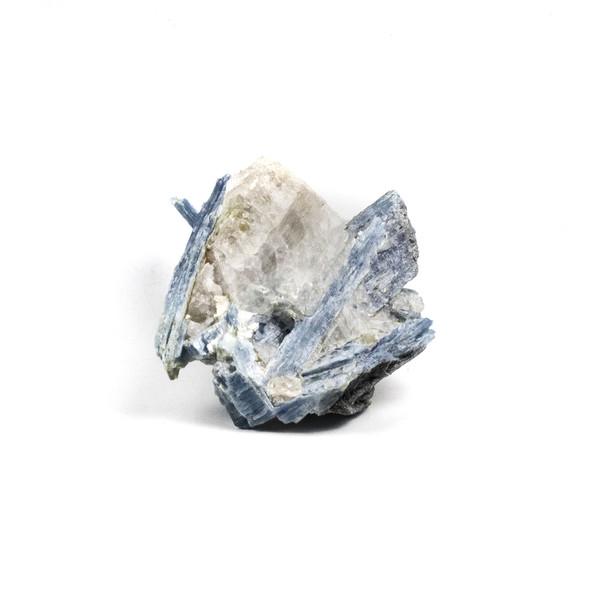 "Kyanite 3x4"" Rough Specimen - #5"