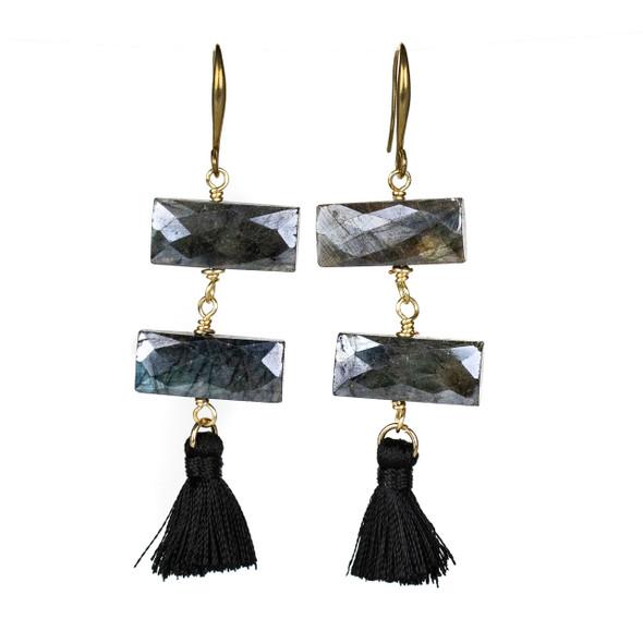 Faceted Labradorite Rectangle & Tassel Earrings - #21
