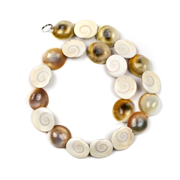 Shiva Eye approximately 18mm Half Sphere Beads - 15 inch strand