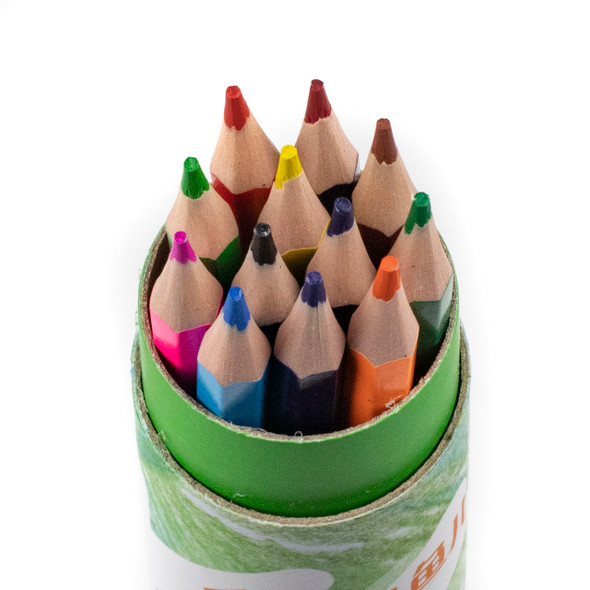 Wood Free Colored Pencils - 12 Assorted Colors