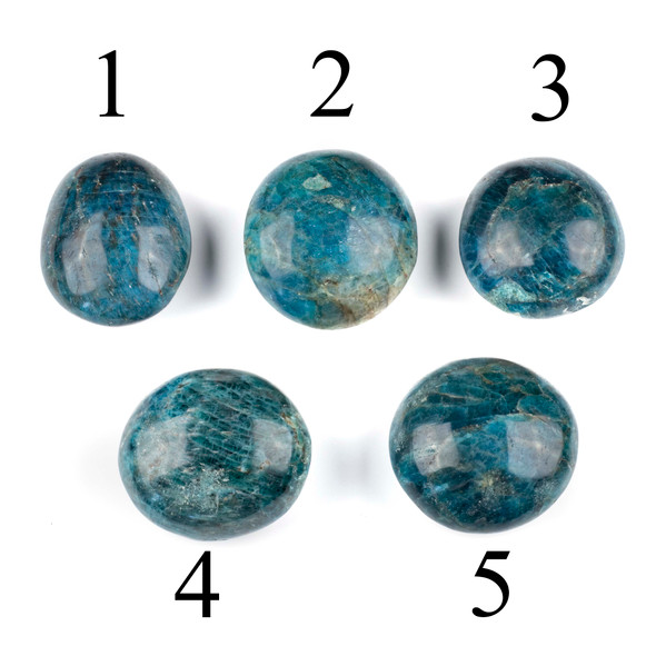 Apatite Large Palm Stone - 1 per bag