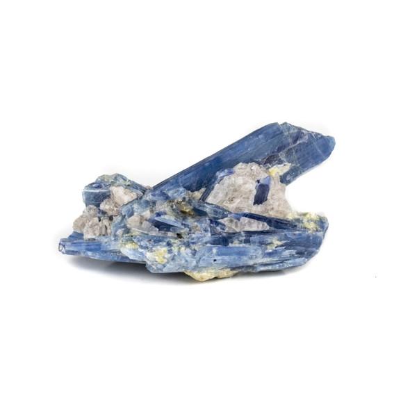 """Kyanite in Quartz 1.5x3.5"""" Rough Specimen - #14"""