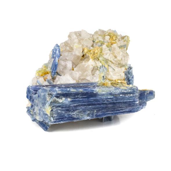 """Kyanite in Quartz 3x4"""" Rough Specimen - #16"""