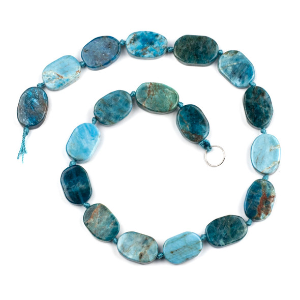 Apatite 11x19mm Irregular Oval Beads - 16 inch knotted strand
