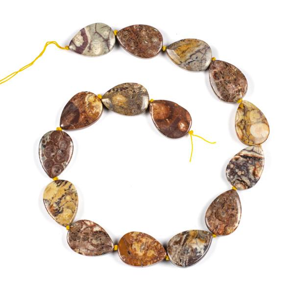 Birds Eye Rhyolite 18x25mm Teardrop Beads - 16 inch knotted strand