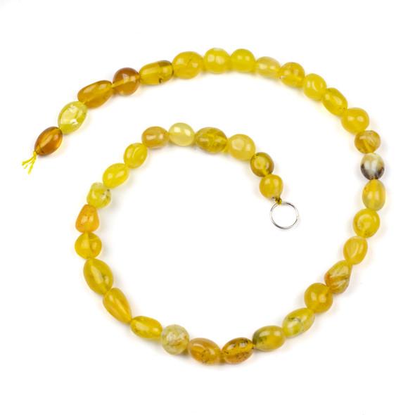 Yellow Opal 10x12mm Pebble Beads - 16 inch strand