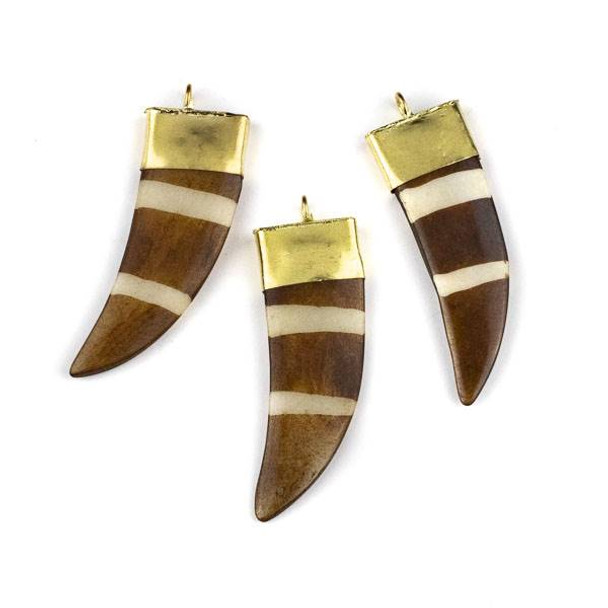 Bone 19x57mm Brown Flat Horn Shaped Pendant with White Stripes and Gold Plated Brass Cap - 1 per bag