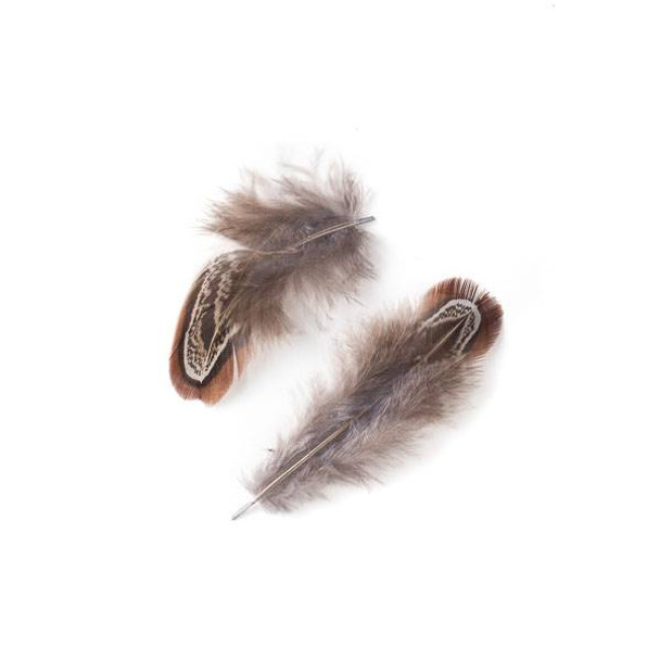 Brown and Grey Feathers, 3 inches, 2 per bag - #2-5