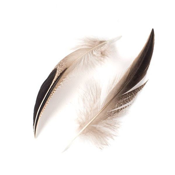 Brown and Black Feathers, 5 inches, 2 per bag - #4-2