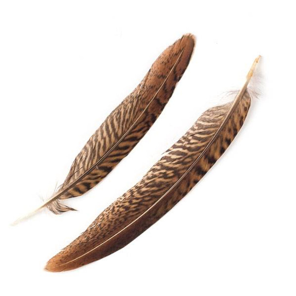 Brown and White Striped Feathers, 5-6 inches, 2 per bag - #4-4