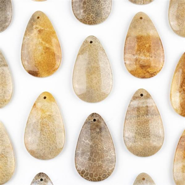 Fossilized Coral 30x50mm Top Front to Back Drilled Teardrop Pendant with a Flat Back - 1 per bag