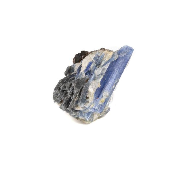 """Kyanite in Quartz 2x2.5"""" Rough Specimen - #31"""