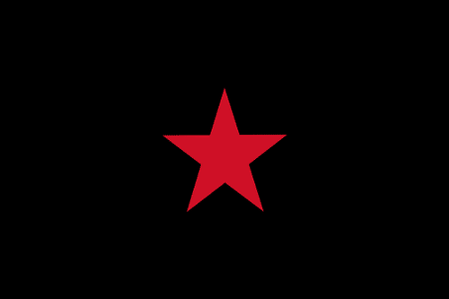EZLN – Zapatista Army of National Liberation 5 x 3 flag with two grommets