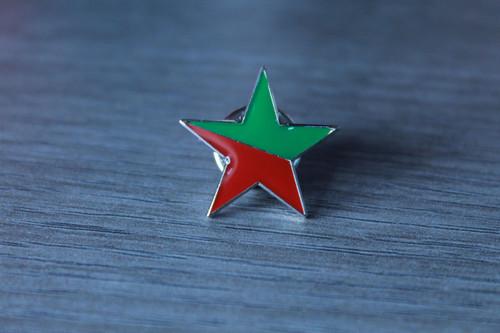 Socialist Ecology star enamel badge