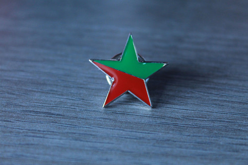 Socialist Ecology star enamel badge