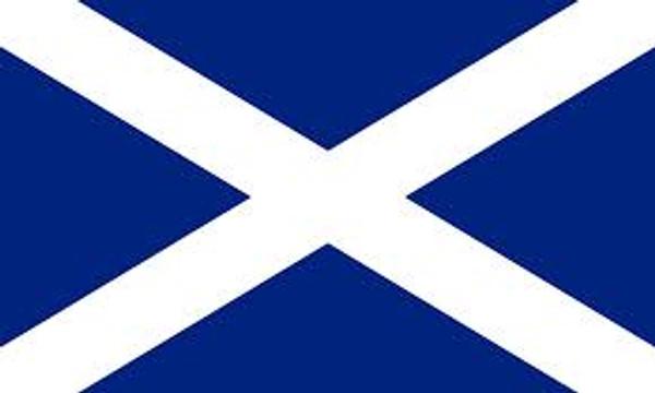 Giant Scottish saltire 8 x 5 flag
