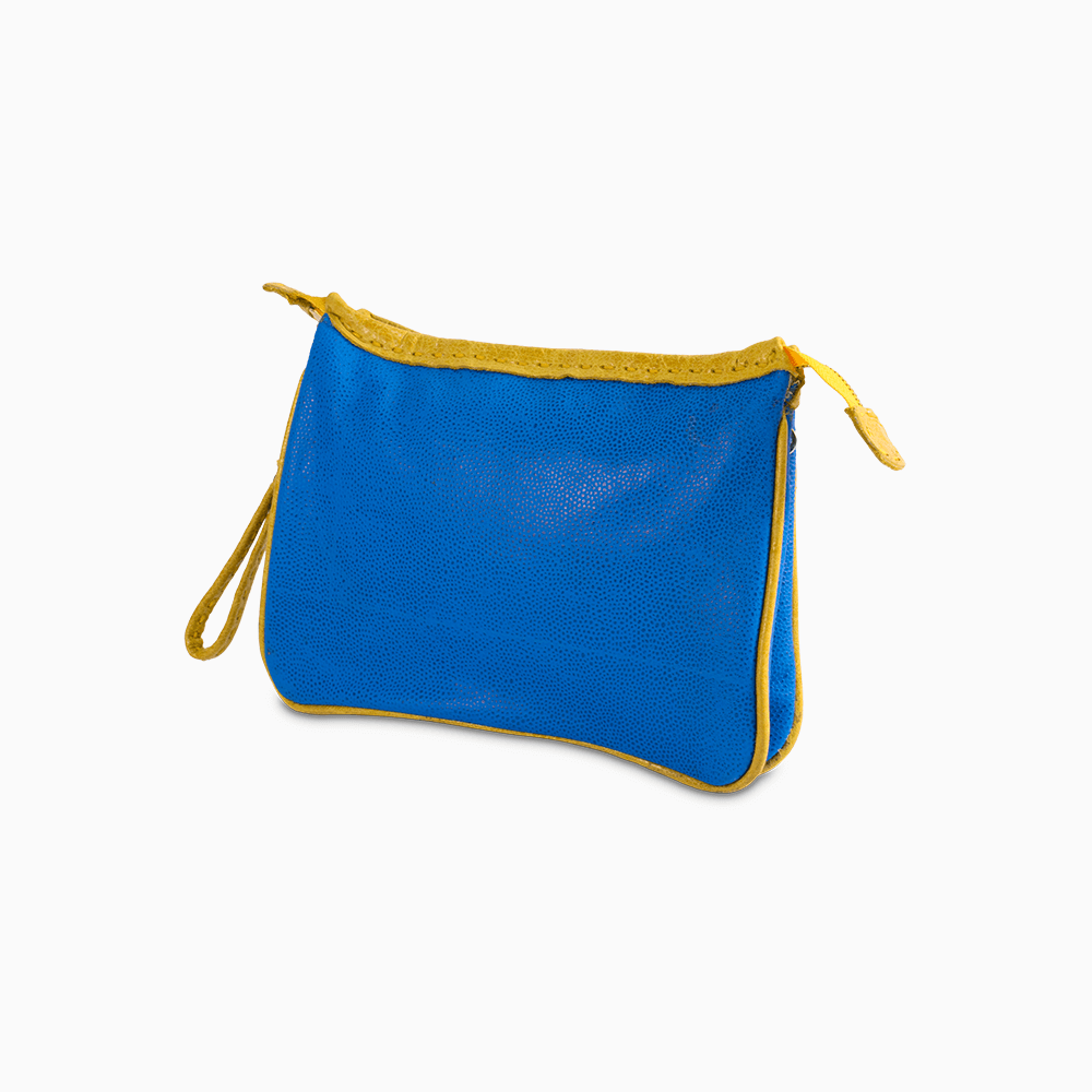 Blue & Yellow Clutch