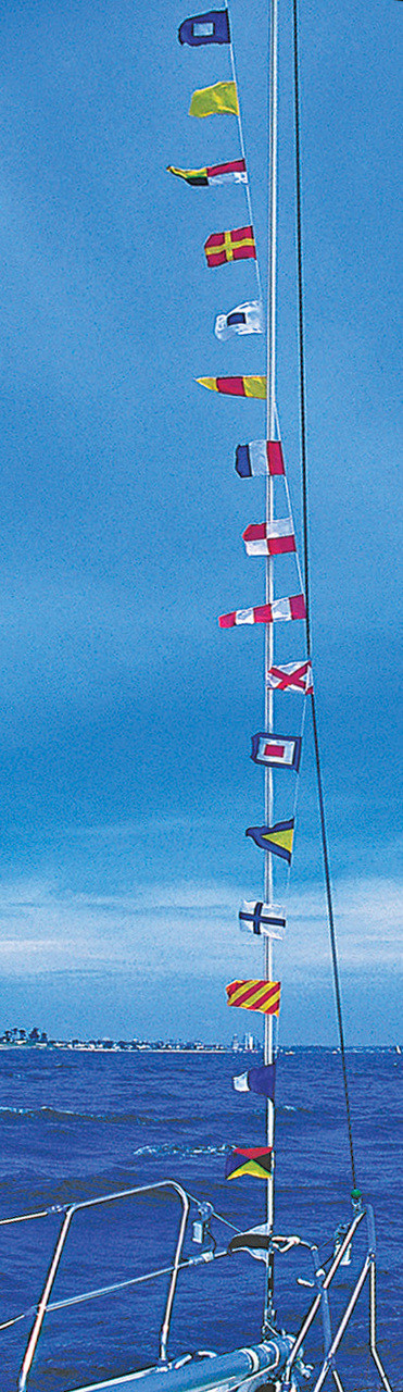 Code Flags - String of Pennants