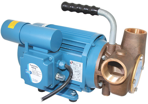 Pump - Heavy Duty 240v Utility AC Pump