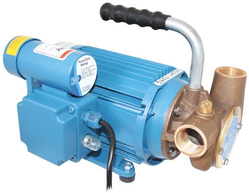 Pump - Heavy Duty 240v Utility Pump