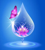Illustration of a butterfly on a water droplet with a flower inside