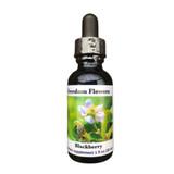 Blackberry flower essence bottle on white background