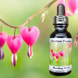 Bleeding Heart flower essence bottle with a bleeding heart branch garden photo in the background.